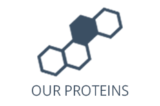Our Proteins